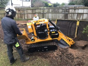 Tree Stump Grinding Machine london and the south east.