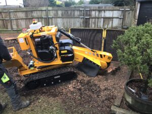 Stump grinder removing a trees stump in Kent